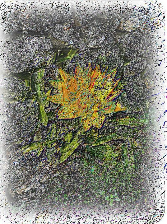 wall flower - RosArt