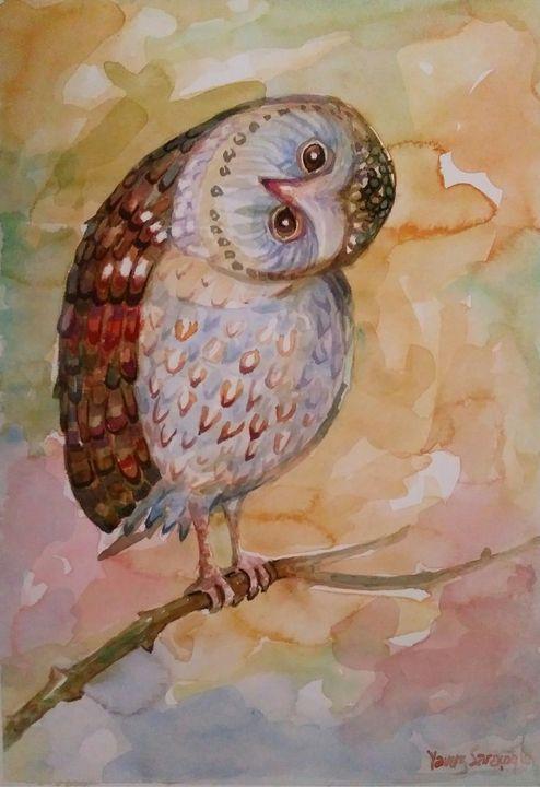 Owl - artgallery