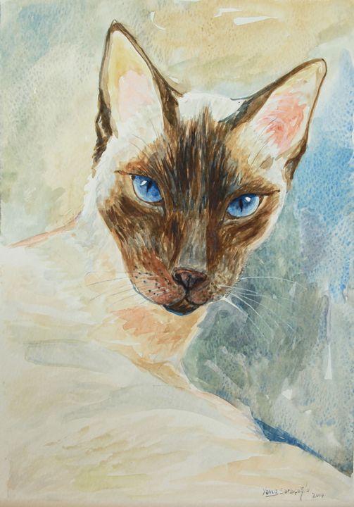 CAT - artgallery