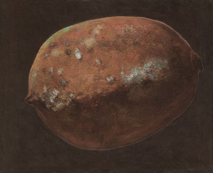 The rotten lemon 01 - Chunlei Ni,  a Chinese Bronze Oil painter