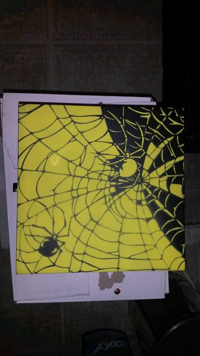 Airbrushed Box - Spider - Acro Arts