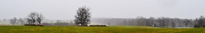 Nourishing Rain 2 - Adrienne Cook