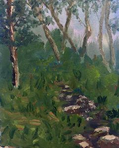 Woodard Creek