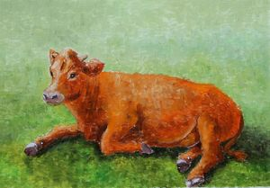 Ginger cow in the meadow
