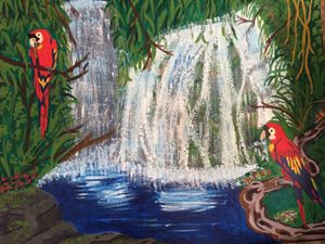 parrots at the waterfalls