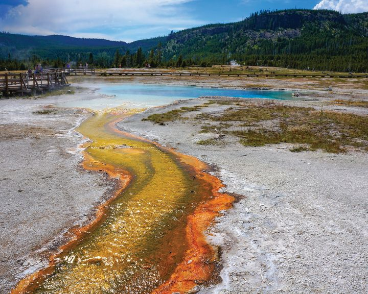 Grand Prismatic Spring - Rosemary Wendorf