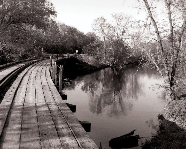Tracks over water - Rosemary Wendorf