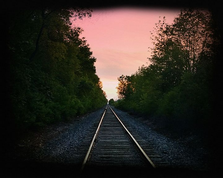 The Tracks - Rosemary Wendorf