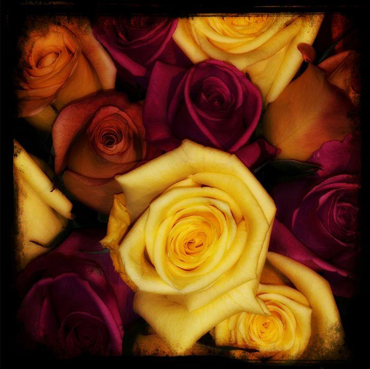 Romance - Rosemary Wendorf