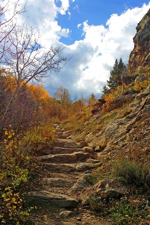 Climbing Upward - Rosemary Wendorf