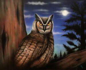 """Nocturnal"" Owl Art Prints"