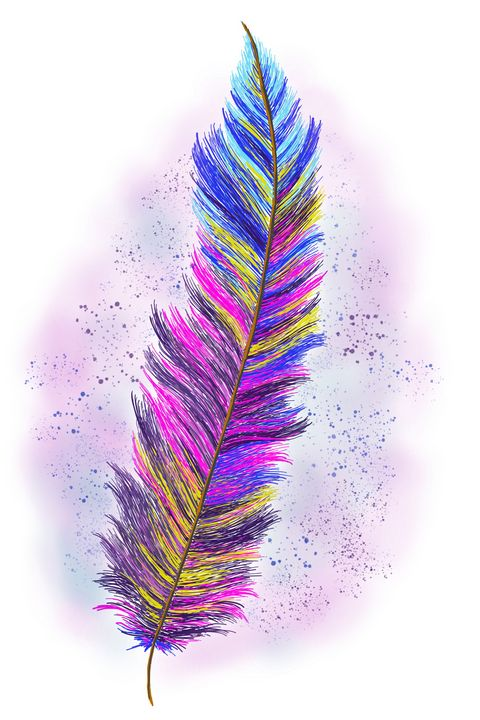 """""""Feather From Above"""" Digital Art - Gregg's Deep Colors"""