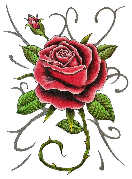 """""""Tattoo Style Red Rose Design"""" - Gregg's Deep Colors"""