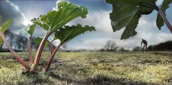 Farmer - Cas Slagboom