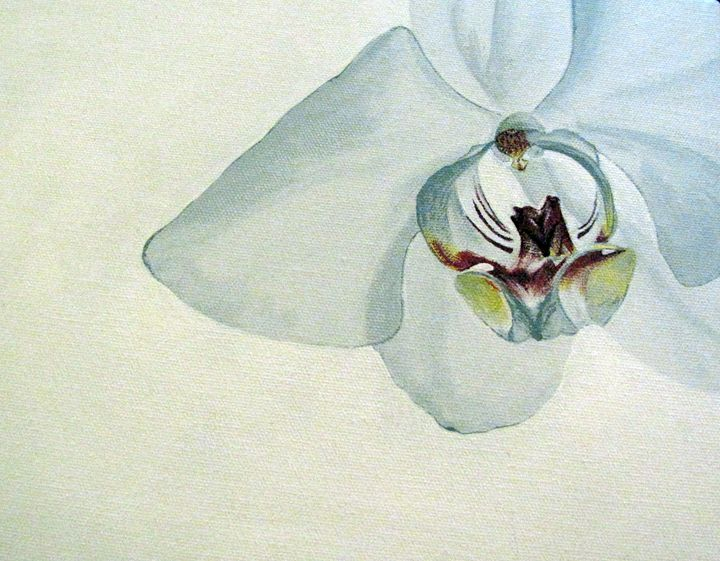 Orchid #4 of 4 - NMD Studio