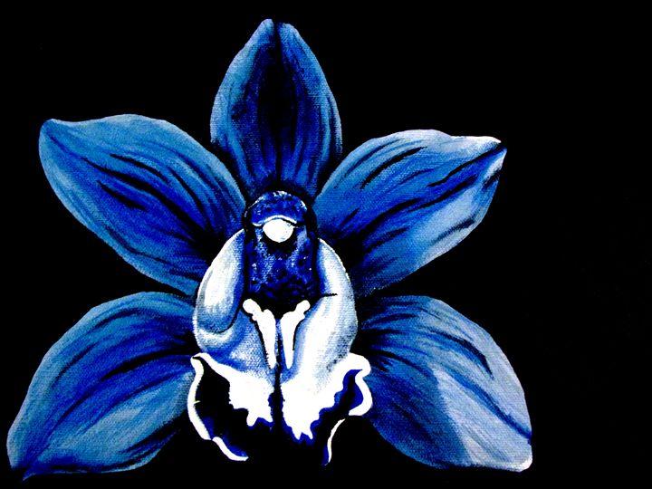 Blue Orchid #1 of 4 - NMD Studio