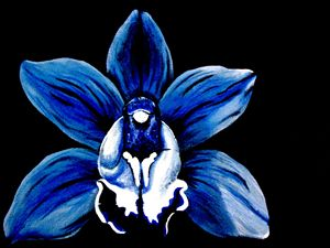 Blue Orchid #1 of 4