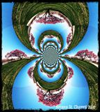 Tree of Life Abstract Photo design