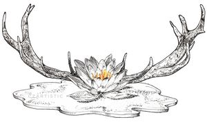 """""""Enchanted"""" - Antlers and Lotus"""