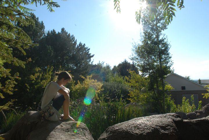 Sunny Day -  Aidenma23