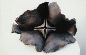 Implodishperal hyparas tetra - KNG Iron