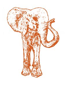 Filtered elephant