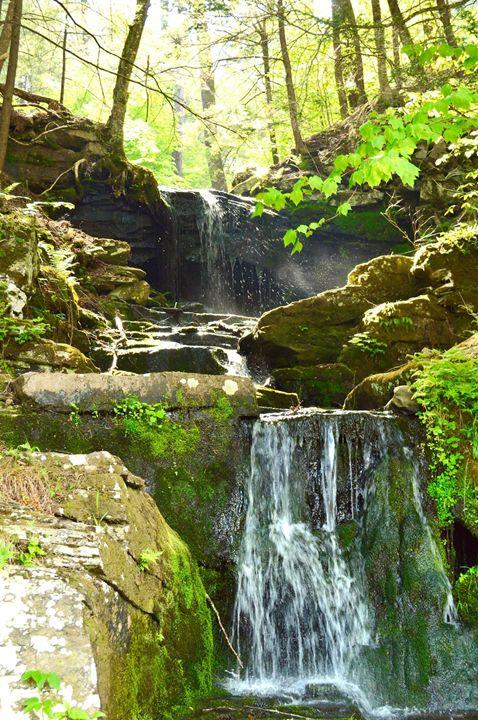 Catskill Park Waterfall - Samantha Tamburello