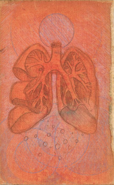 Book Cover Lungs - Spencer Roeder