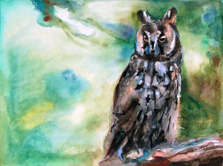 Owl - Anastasiia