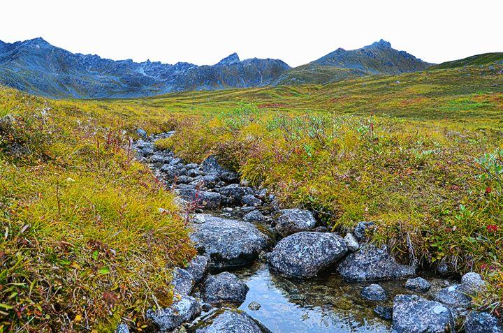 Hatcher Pass, AK stream. - Spade Photo