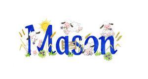 Mason sheep