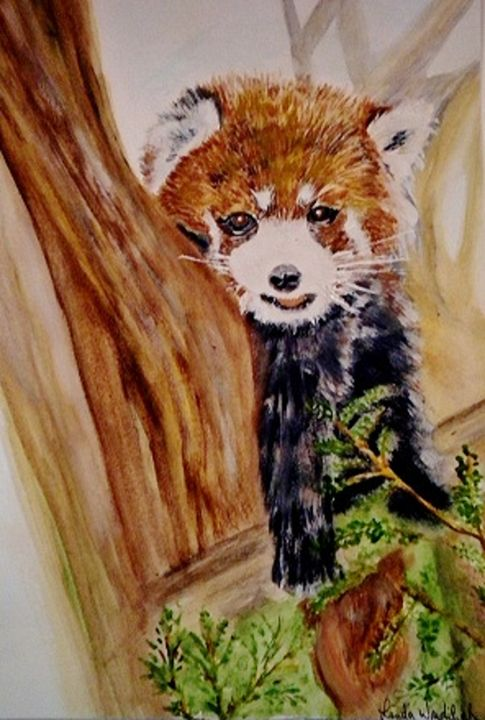 Red Panda - Linda Waidelich