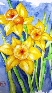 Daffies on blue