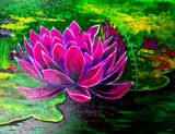 Hot pink Water lily