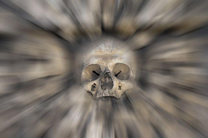 skull - fear and trembling - Art Gallery