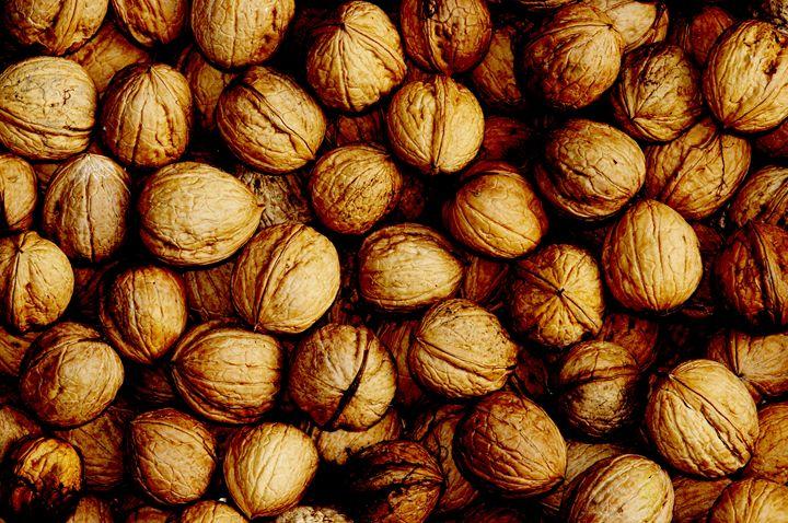 walnuts - Art Gallery