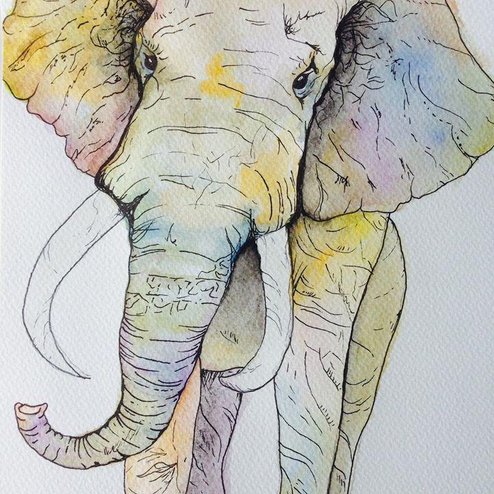 Boho Elephant - Maya Antoni