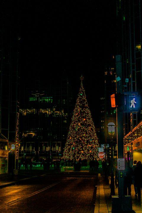 Christmas in the burgh - Destiny