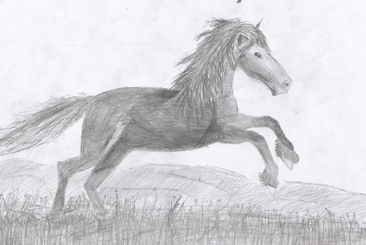 Horse Power - Art studio