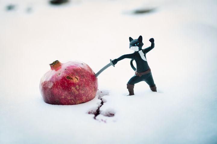 Fruit Ninja - Kelly Crabtree Photography