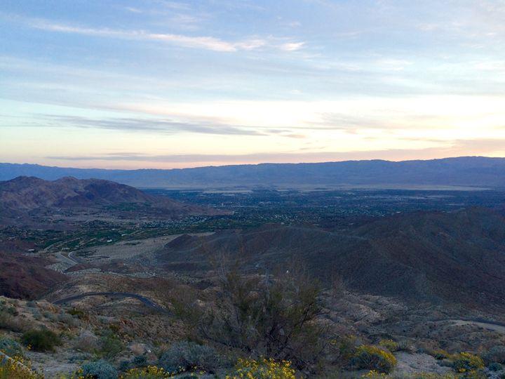 Coachella Valley Winter - John McAfee