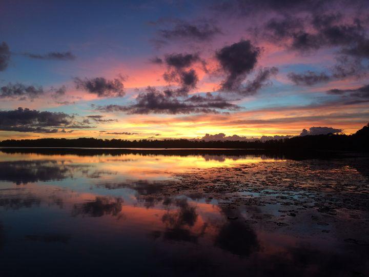 Colorful Reflection - John McAfee