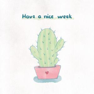 Cute Little Cacti