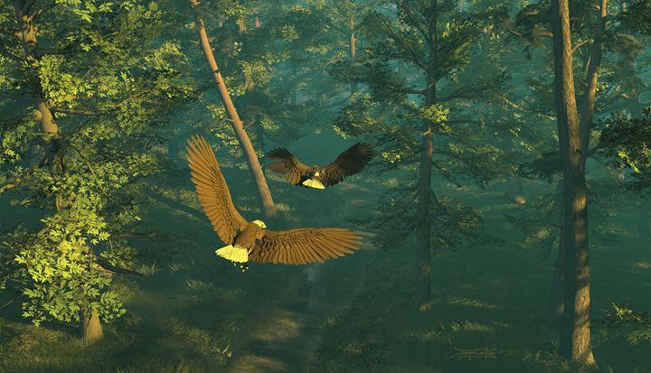 On Graceful Wings - Dieter Carlton