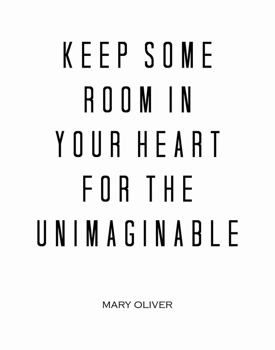 Mary Oliver The unimaginable - Wall Vibes