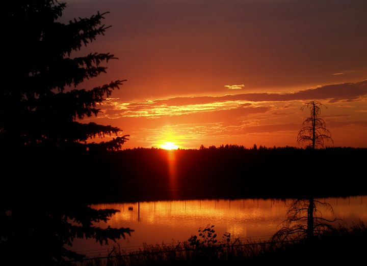 Lagoon Sunset - Growing Within