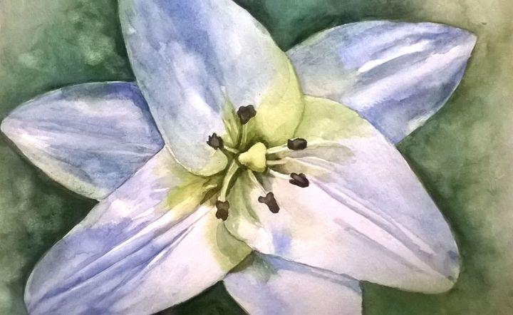 White flower - Ginger Czarnecki