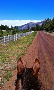 Horses Ears on E. Old Walnut Canyon