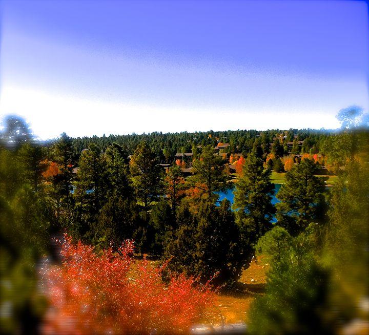 Country Club, Fall, Flagstaff, AZ - Nobility Ranch, Season M. Ellison