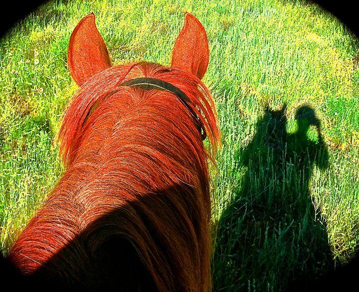 Rider Silhouette & Horse Ears - Nobility Ranch, Season M. Ellison